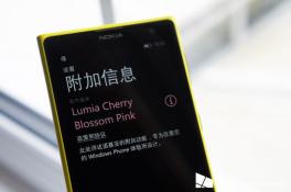Không phải Blue, Windows Phone 8.1 sẽ là Cherry Blossom Pink?