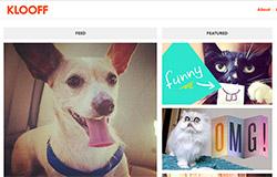 Klooff - Mạng xã hội dành cho thú cưng