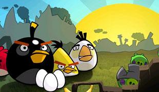 Angry Birds hạ cánh xuống Facebook