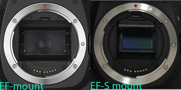 Canon mount