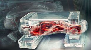 Robot sinh học chế tạo bằng mô người, có thể dùng để cấy ghép