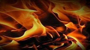 """Mất mạng vì cố cứu """"dế"""" trong đám cháy"""