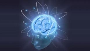 4 sự thật về trí thông minh