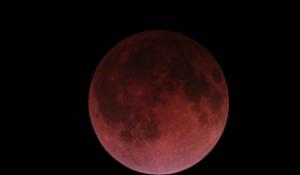 """Cảnh tượng """"trăng máu"""" trên khắp hành tinh"""