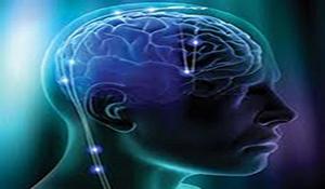 10 sự thật kinh ngạc về não người