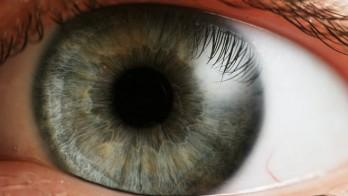 Tại sao mắt và não người thích các nội dung chạy ở 60fps?