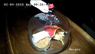 Hamburger của McDonald's sau 5 năm sẽ như thế nào?