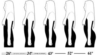Vì sao đàn ông thích phụ nữ có vòng 3 khủng?