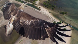 Bộ ảnh chụp bằng drone đẹp nhất 2014