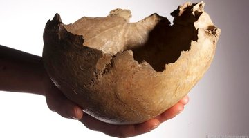 Bằng chứng người tiền sử từng ăn thịt nhau