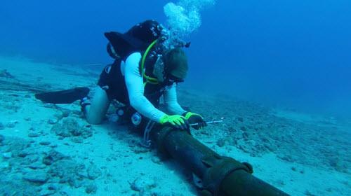 Mất 3 tuần để khắc phục sự cố đứt cáp quang biển AAG