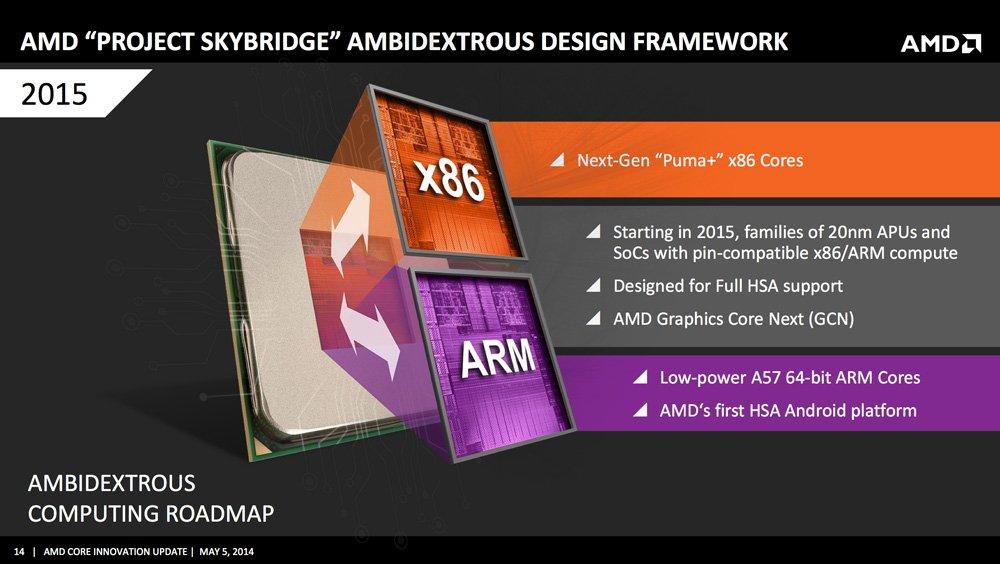 AMD Skybridge Project