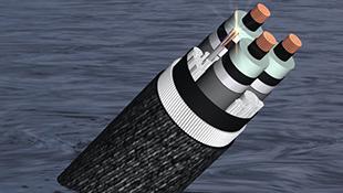 Cáp AAG sửa chữa 10 ngày: Viettel bổ sung dung lượng quốc tế
