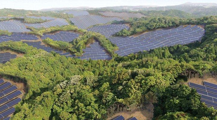 Nhật Bản biến sân golf bỏ hoang thành nhà máy điện mặt trời