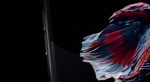 Loạt video giới thiệu về tất cả các sản phẩm của Apple.