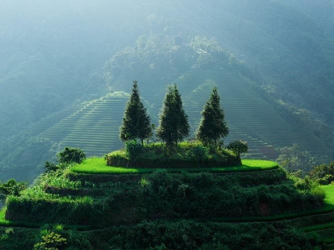 Vẻ đẹp nơi hẻo lánh ở Việt Nam qua góc nhìn của nhiếp ảnh gia Pháp