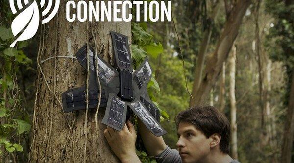 Ý tưởng dùng điện thoại cũ để theo dõi, bảo vệ rừng