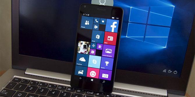 Microsoft không hề quan tâm tới Windows Phone