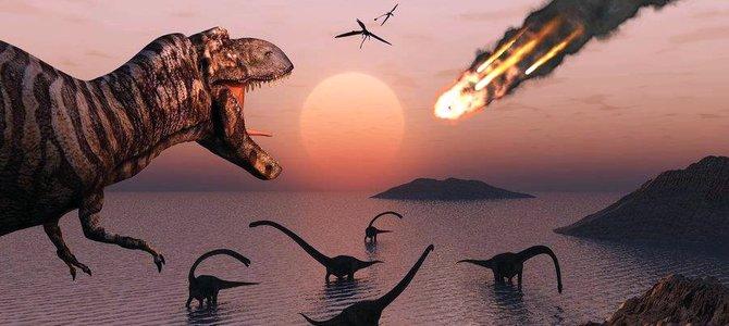 Sinh giới đã phục hồi thế nào sau đại tuyệt chủng?