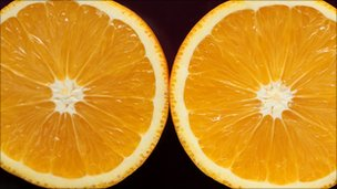 Lò vi sóng biến thức ăn thừa thành nhiên liệu sinh học