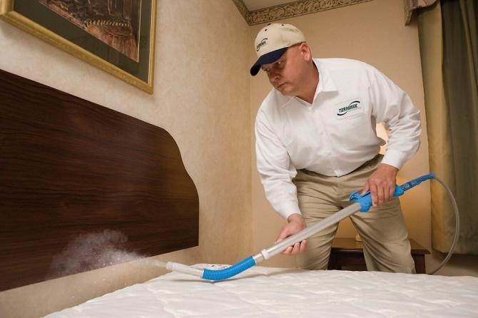 Rệp giường chuyên hút máu người bắt đầu có khả năng kháng thuốc diệt côn trùng