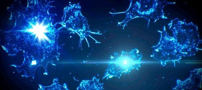Đột phá cách mạng trong điều trị ung thư nhờ T-Cell