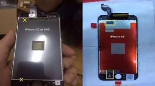 Những hình ảnh đầu tiên của iPhone SE với camera 12 MP