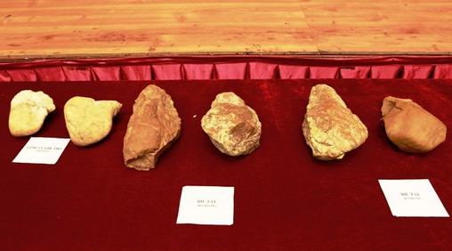 Tìm thấy dấu vết người vượn đứng thẳng ở An Khê 80 vạn năm trước