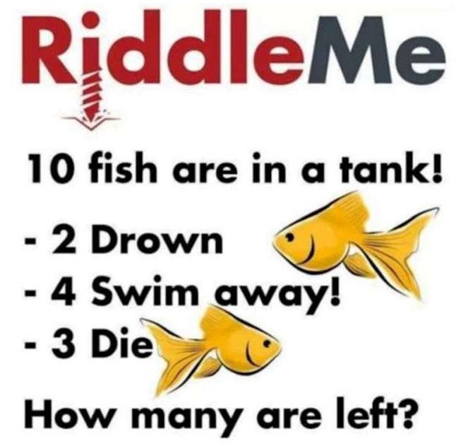 Không ai giải được câu đố này, bạn có phải là ngoại lệ?