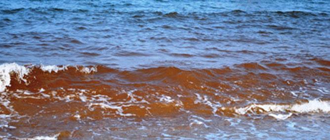 Ý kiến khác nhau về vệt nước đỏ dọc bờ biển Quảng Bình
