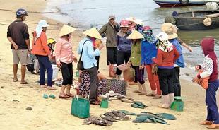 """Vụ Formosa: """"Chất ô nhiễm vẫn tồn lưu trong trầm tích mặt đáy biển"""""""