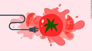Biến cà chua thành điện năng như thế nào?