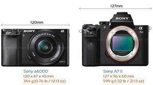 Crop APS-C và Full Frame: Cảm biến nào phù hợp cho chân dung?