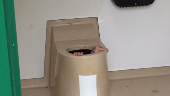 toilet-mac-ket