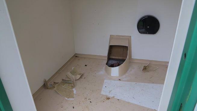 smartphone-roi-toilet