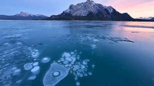 Đi tìm lý do lượng oxy trên Trái Đất liên tục suy giảm
