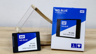 SSD của WD đã về Việt Nam, giá từ 2,49 triệu cho bản 250GB