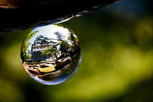 Nhiếp ảnh khúc xạ với quả cầu pha lê