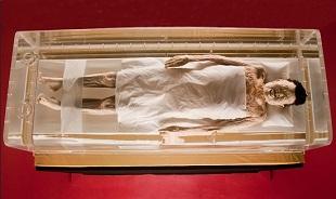 Xác ướp Tân Truy phu nhân, 2.000 năm tóc vẫn mượt, da vẫn mịn