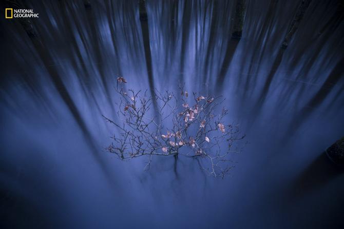 19 bức ảnh thiên nhiên tuyệt tác 2016 - ảnh 15