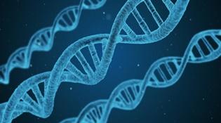 Các nhà khoa học thành công lưu trữ 215 petabyte trong một gram DNA