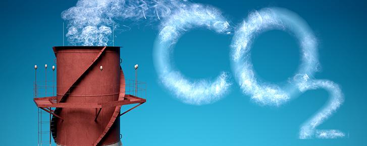 Tại sao chúng ta thở ra carbon dioxide?