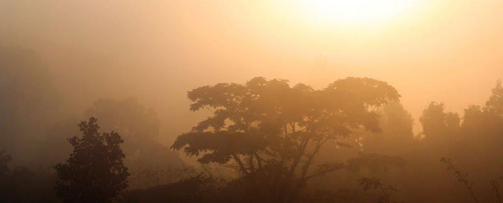 Như đà tăng CO2 hiện nay, Trái Đất có thể quay về kỷ Trias, thậm chí còn tệ hơn