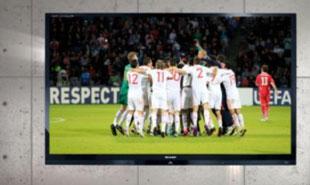 Euro 2012: giá TV giảm 20%, hàng hóa dồi dào