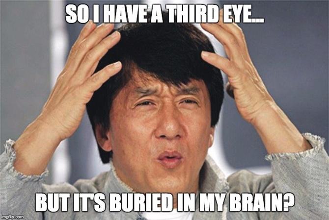 Động vật có mắt thứ 3 không?