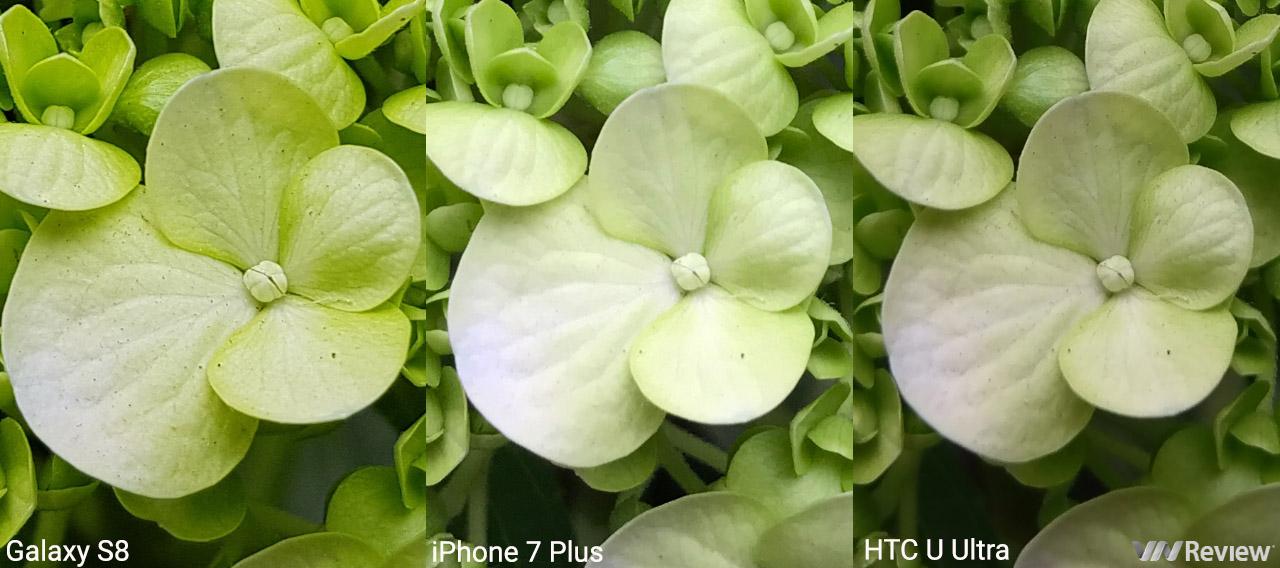 Đọ chi tiết camera: Galaxy S8, iPhone 7 Plus và HTC U Ultra - ảnh 15