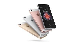 """Chiếc iPhone """"Made in India"""" đầu tiên sẽ lên kệ trong tháng này"""