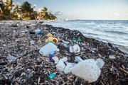 Bất ngờ phát hiện hòn đảo chứa hơn 19 tấn rác thải từ biển