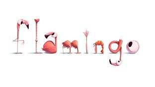 Tại sao chim Hồng Hạc thích đứng trên một chân?