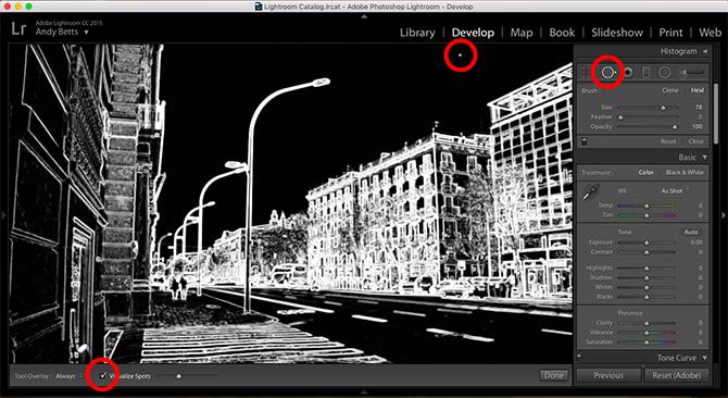 10 mẹo khắc phục sự cố máy ảnh với Lightroom - ảnh 3